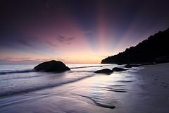 Magic Light - Penang National Park, Malaysia photo by fwukai
