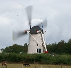 The windmill in full swing. photo by j.elemans