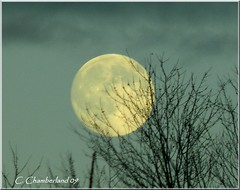 In the moon! photo by c.chamberland
