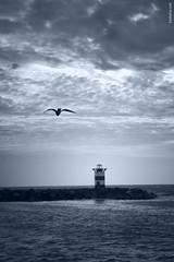 Freedom photo by Ben Heine