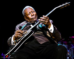 BB King-0377 photo by Margaret-10 Images