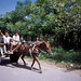 Transport, Sumbawa