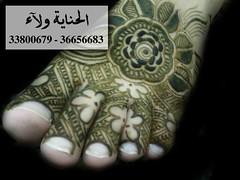حنة عروس 2011 / 1 photo by » الحناية ولاء «