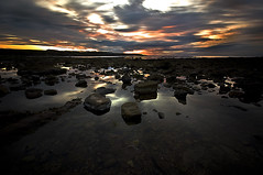 Hot and Humid photo by dan barron photography - landscape work