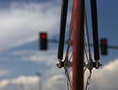 el ciclismo en lo cotidiano (a) photo by didnotspillcoffee