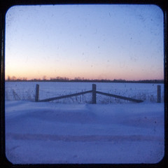331:365 Wintry morning TtV by postcardsfromthemothership