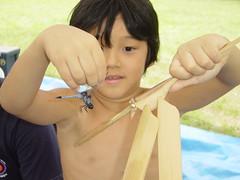 >Homemade Dragonflies~