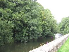 Afon Cleddau ger Llanhuadain