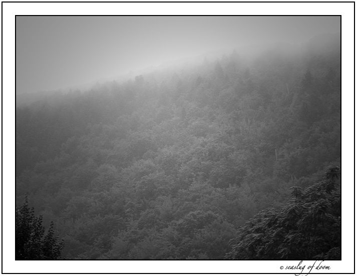 Mist on the mountain