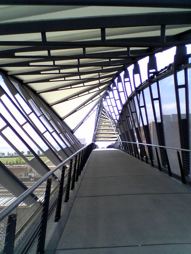 dna bridge