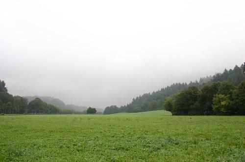 September landscape II