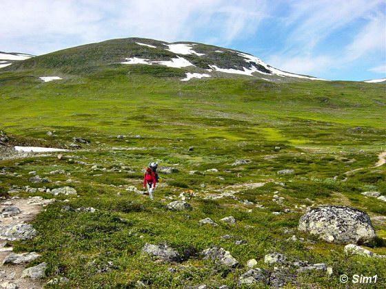 Alone on the Fjällen