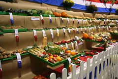 Vegetable Competition