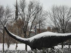 el diplodocus carnegii con más frío que de costumbre