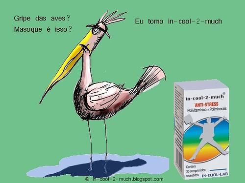 pássaro1