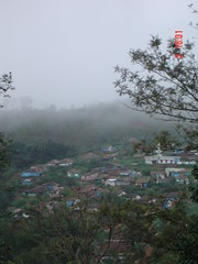 Foggy City .. Madikeri