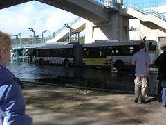 Buses running down the flooded road