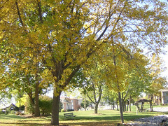 fall park 2
