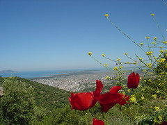 Vlora - albania photo by -kÇ-