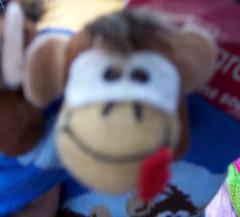 monkeysox5