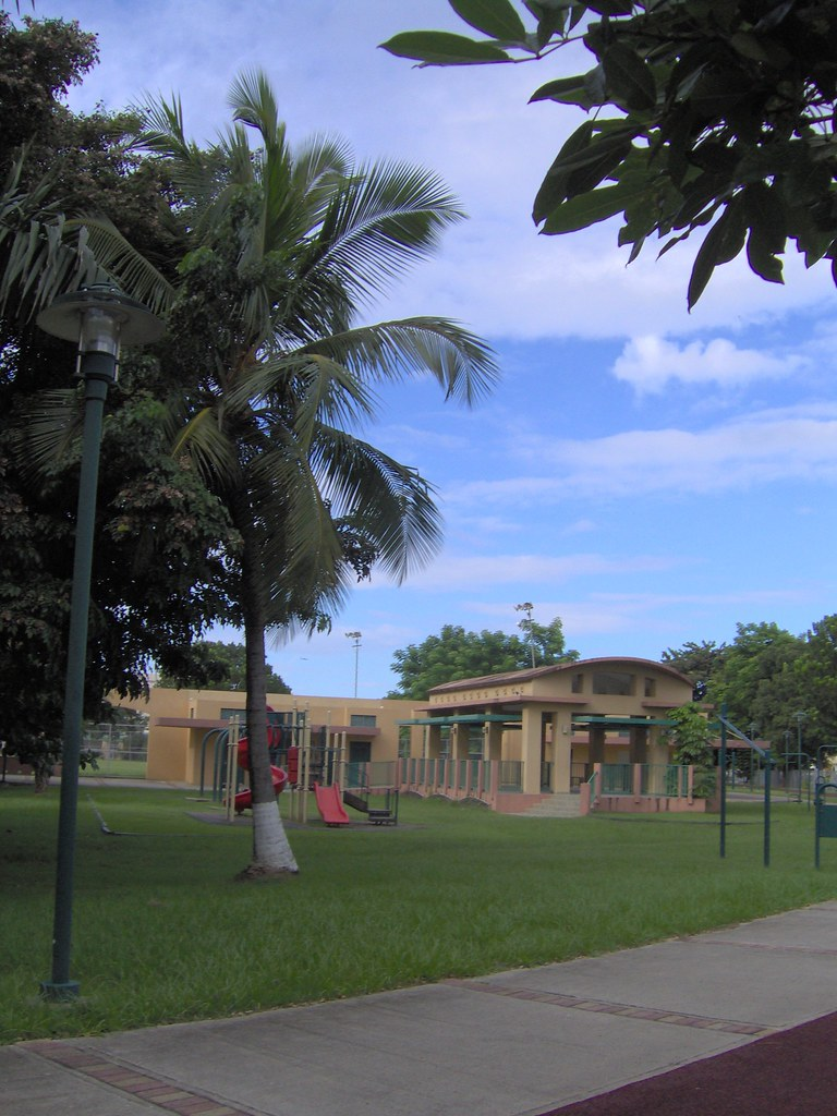 Palm Tree, Playground, Gazebo in Park