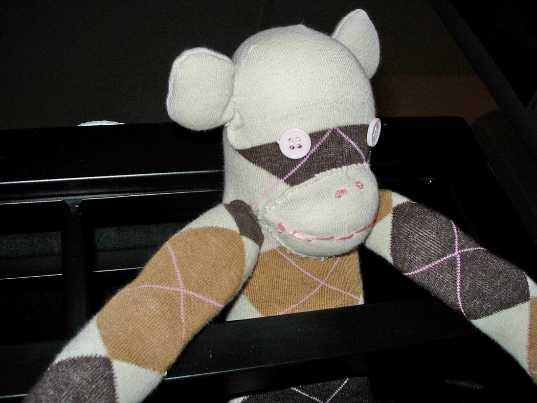 Argyle Monkey