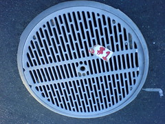 $1 manhole
