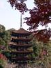 五重塔(瑠璃光寺)