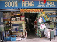 Soon Heng Fish Tanks Tropical Fish Dealer shop