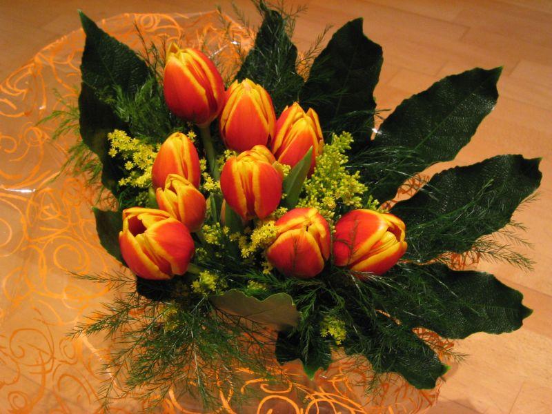 Tulipes pel meu sant (1)