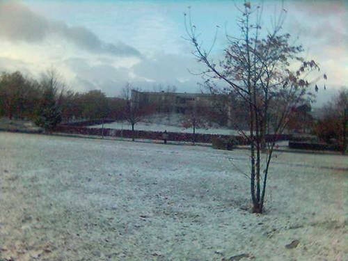 Ya llego la nieve!