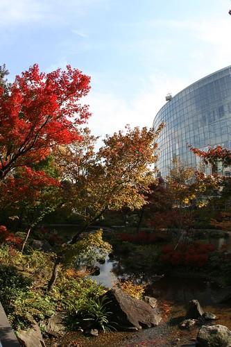 autumn in roppongihills