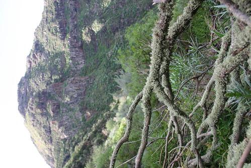 Roque Negro (1034m) in hobbit territory