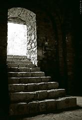 light photo by seyed mostafa zamani