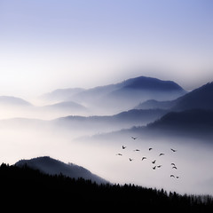 Flying Over The Fog photo by Philippe Sainte-Laudy