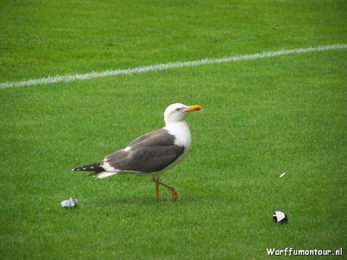3780738043 5c5bb6bcb1 FC Groningen – Ajax 0 2, 2 augustus 2009
