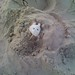 Mouse in the Sand