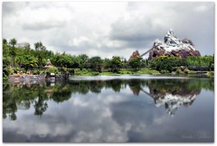 Disney Animal Kingdom photo by Ronaldo F Cabuhat