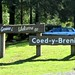 Welcome to Coed-y-Brrenin