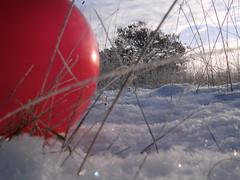 Pics/Art/Red Ball/PICT0716.JPG
