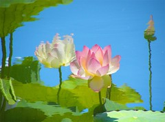 Lotus Reflection - Nature's Impressionist Art photo by Stanley Zimny