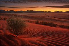 Namib Glow photo by Sandra OTR