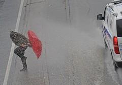 Lluvia y sombrilla / Rain and Umbrella photo by Gabriel Aponte Salcedo