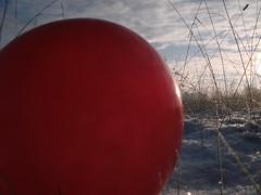 Pics/Art/Red Ball/PICT0712.JPG