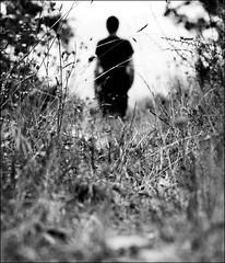 The Stranger. photo by Rui Luz