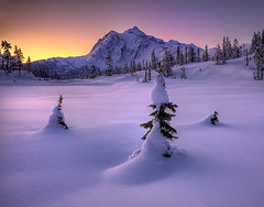 Mt Shukasan From Picture Lake In Winter photo by kevin mcneal