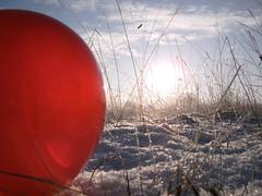Pics/Art/Red Ball/PICT0730.JPG