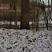 prismatic lake