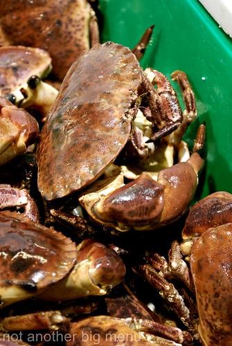 Billlingsgate fish market - crab