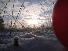 Pics/Art/Red Ball/PICT0717.JPG